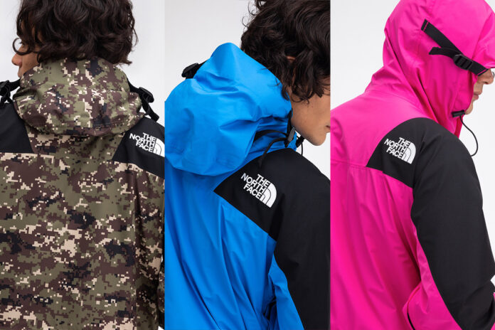 Retro Mountain Light di The North Face